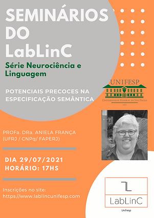 Cartaz Semiários_AnielaFrança.png