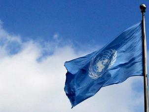 Arvamus seoses Eesti inimõiguste ülevaatusega ÜROs
