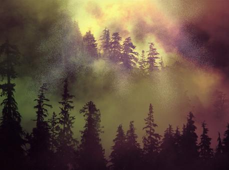 The Mountain Air