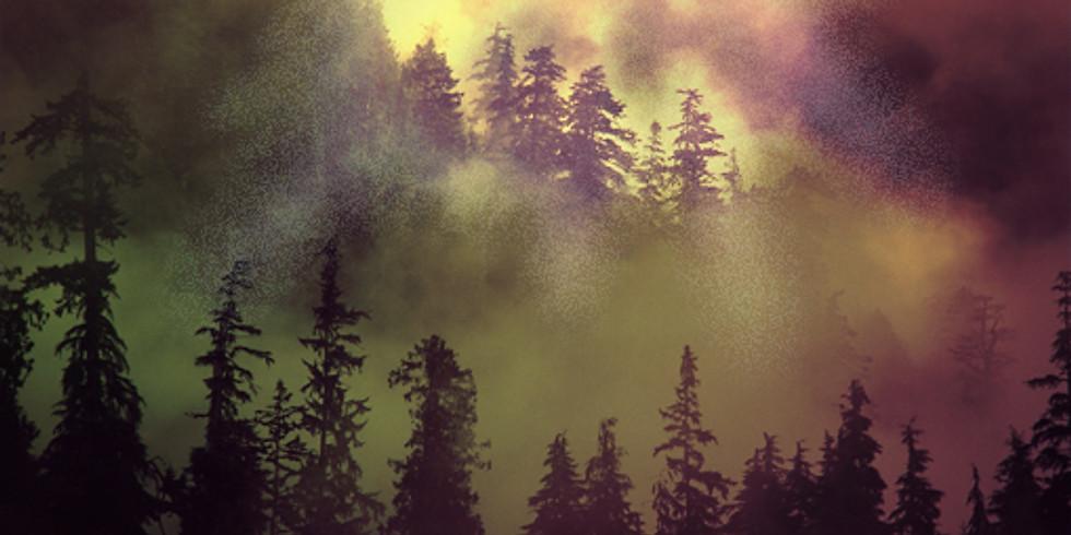 Mystical Hope Wisdom Practice Retreat
