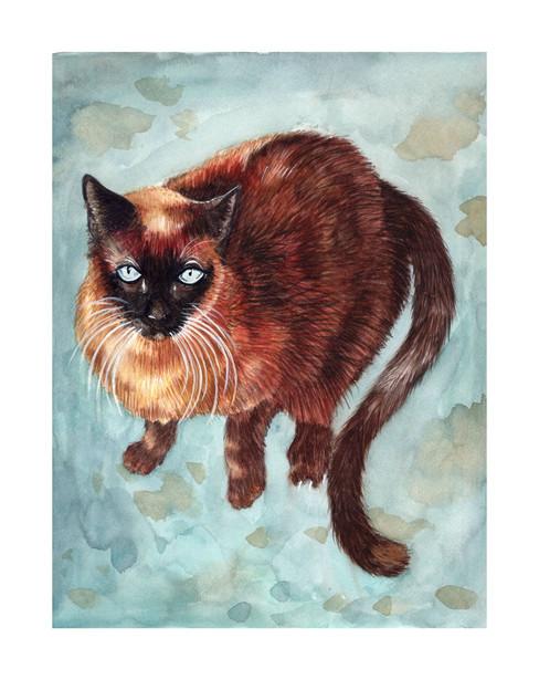 Pet Portrait No. 2
