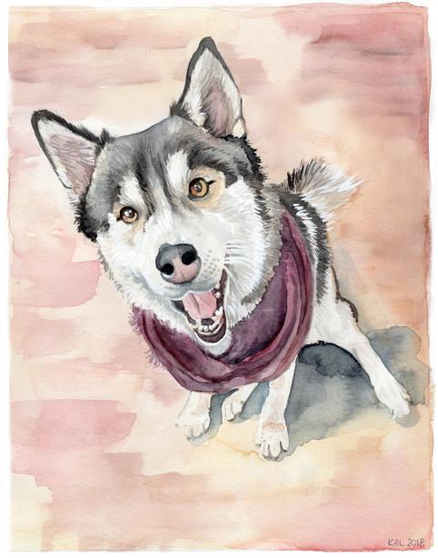 Pet Portrait No. 9