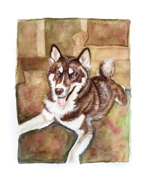 Pet Portrait No. 4