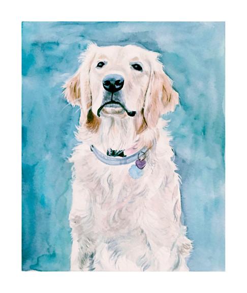 Pet Portrait No. 3