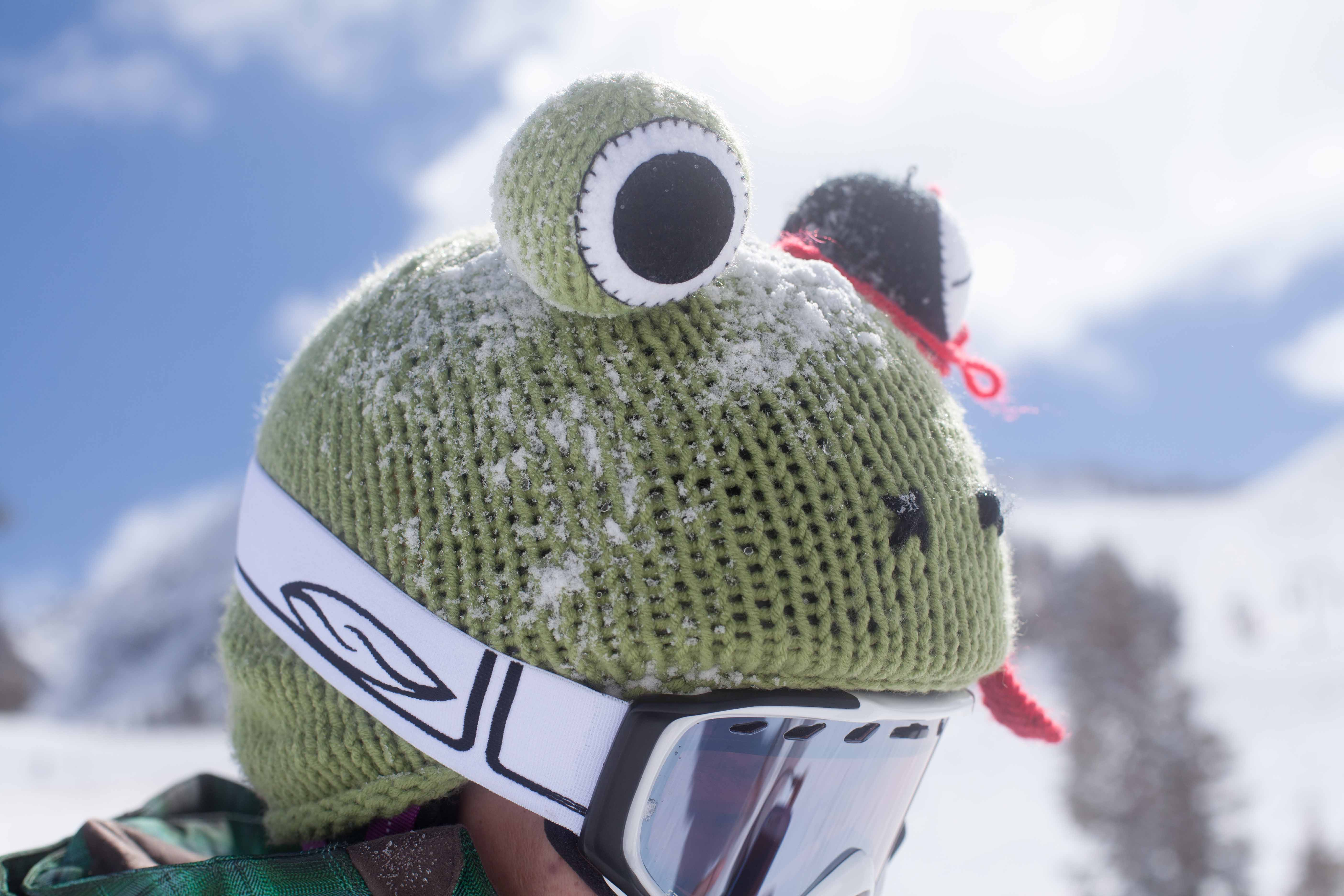 Froggu Helmet Cover