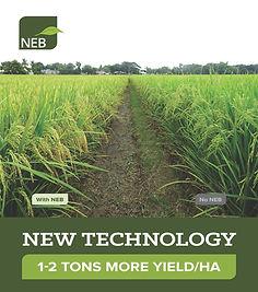 NEB Intro Book, MAR2021, v47_Page_01.jpg