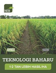 NEB Intro Book, MAR2021, v47, MALAY_Page