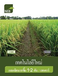 NEB Intro Book, MAR2021,THAI, v47_Page_0