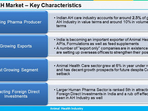 India: AH Market Update 2019 -2020