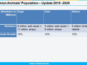 India: Companion Animals Population 2019 -2020