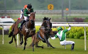Rekindle Romance with Horses.....Predictive Analytics  May Help Some!