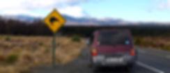 van life, tongariro and Ngauruhoe, kiwi crossing sign