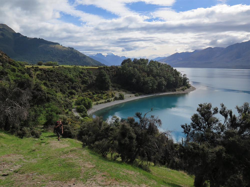 Elfin bay New Zealand
