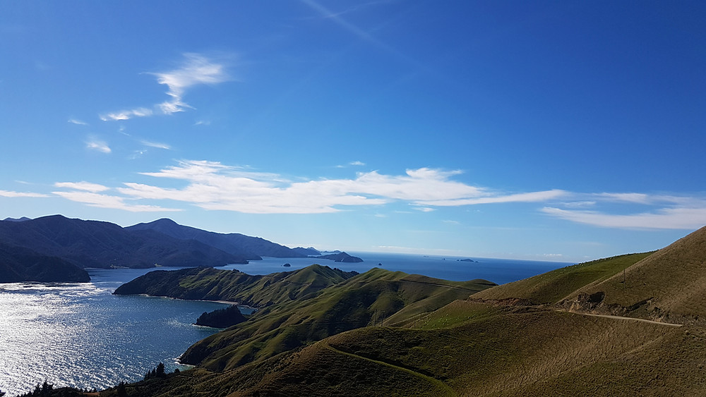 a sonny day on the Marlborough Sounds