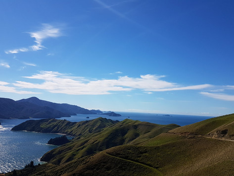 Why Travel New Zealand?