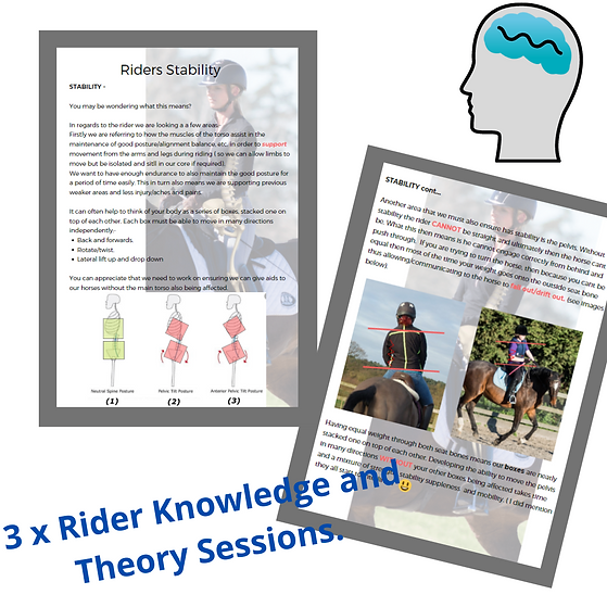 Rider Knowledge and Theory Session..png