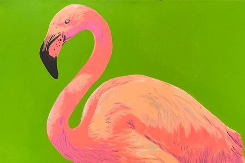 $30/mo Pink Flamingo by Urbansoule 20x40