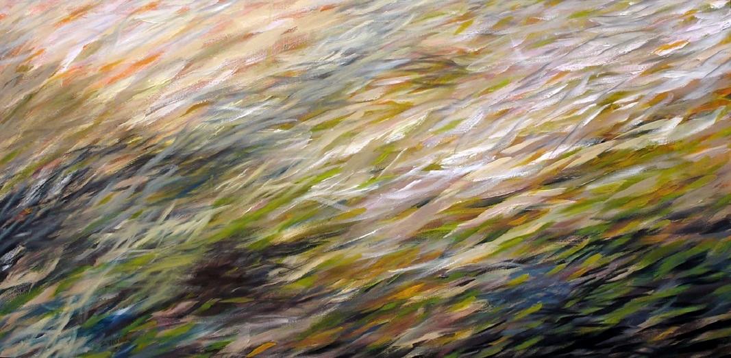 Redmond Wetland