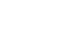 Olapi_LOGO_White+copy_croped.png