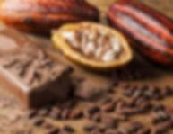 1200-5245-cocoa-photo1.jpg
