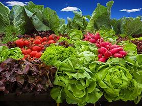vegetables-905382_1920.jpg