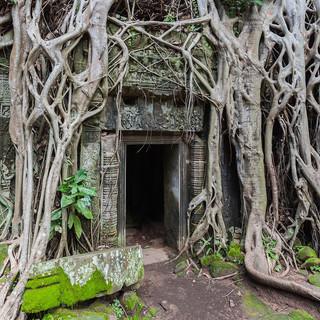 Ta_Phrom,_Angkor,_Camboya,_2013-08-16,_D