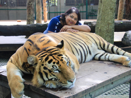 """Be One"" with the Tigers"