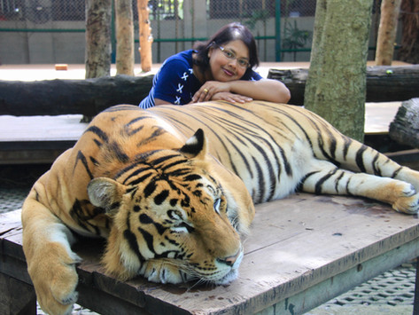 """""""Be One"""" with the Tigers"""