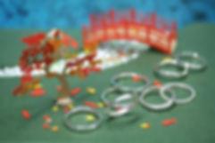幸福の銀の指輪.JPG