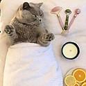 Pretty Kitty Peach Treatment (aka Vajacial)