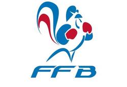 fédération française de boxe