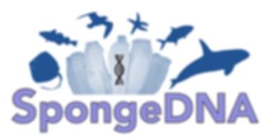 SpongeDNA_logo.png