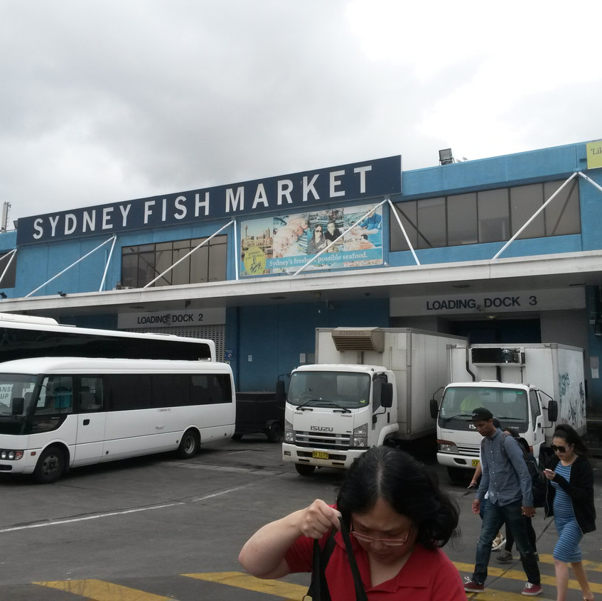 Photo 6. Sydney Fish Market