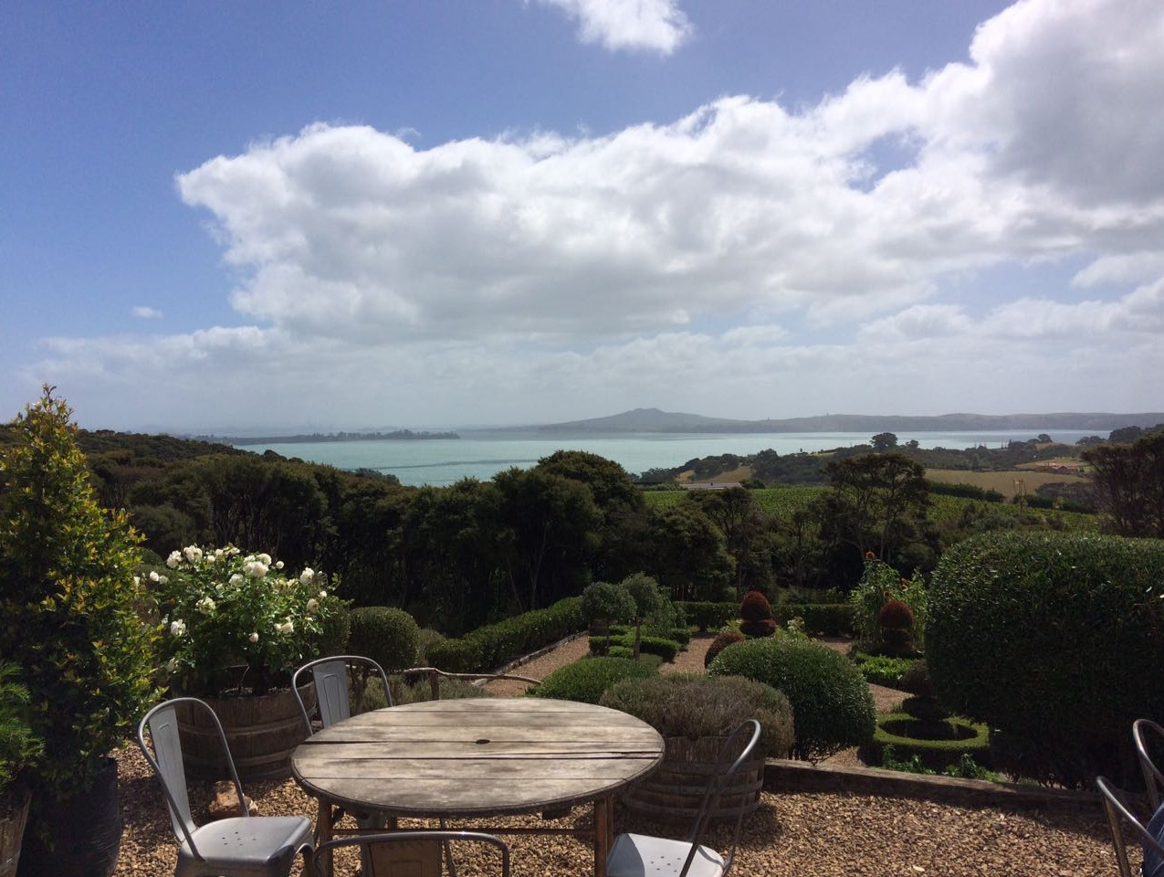 Photo 12. Wine tasting on Waiheke Island