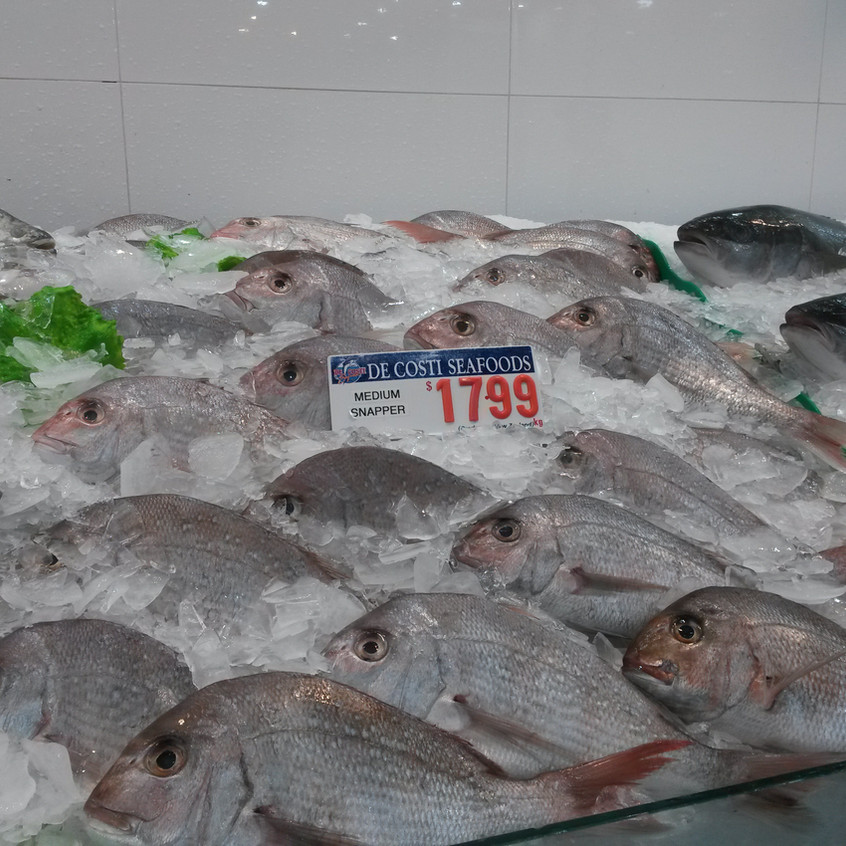 Photo 11. 'Snapper' for sale in Sydney Fish Market