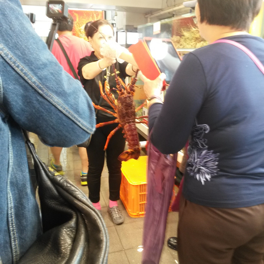 Photo 8. Enormous crustaceans in Sydney Fish Market