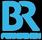 BR_Fernsehen_2016.svg.png