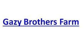 GAZY-BROTHERS.jpg