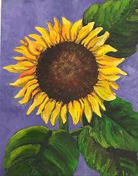 Sunflower oil 8x10 U 150.jpg