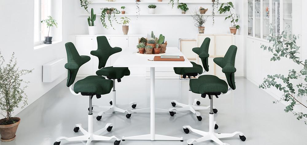 כיסאות ארגונומיים