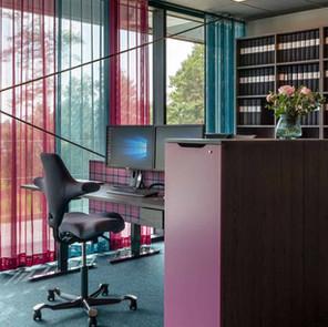 כיסא  HÅG Capisco במשרדים