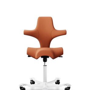 כיסא ארגונומי - מקום העבודה שלי נמצא בבית.