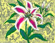 Lilie mit gelben Hintergrund