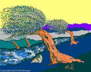Sturm in den Bäumen