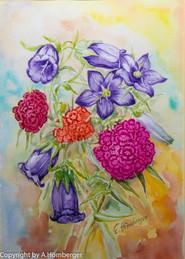 Nelken und Glockenblume