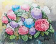 Blumen Hortensien