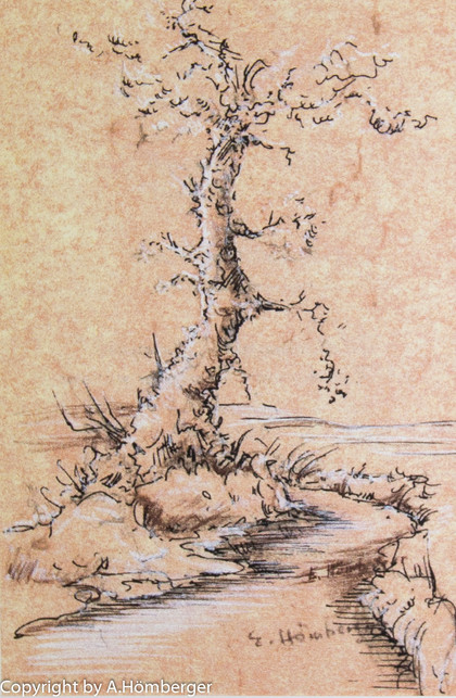 Baum am Bach