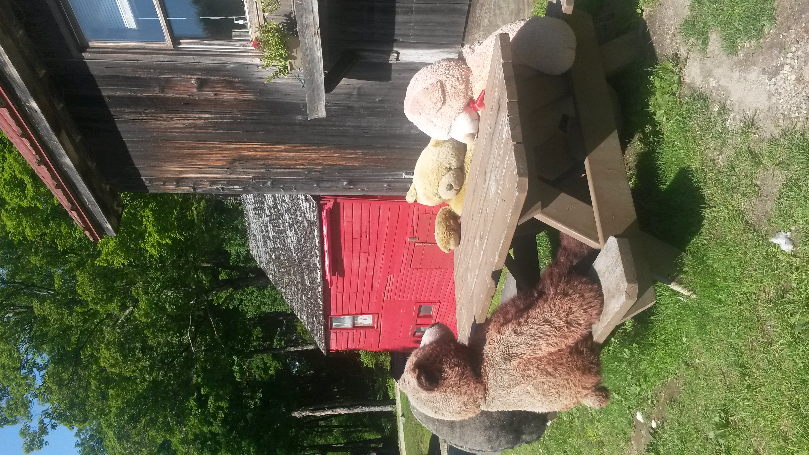 Breakfast with Bears