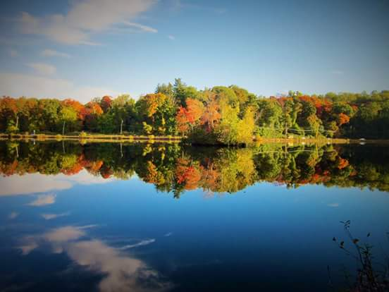 Fall at Tarrytown Lakes