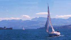 Sailboats on Lake Zurich